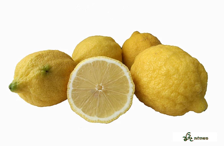 לימון פרנקה
